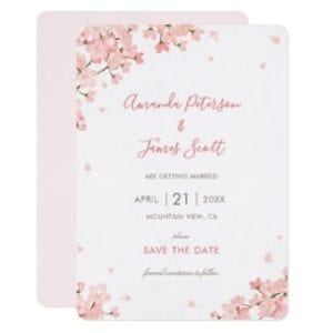 Wedding save the date flat card withpink Japanese sakura cherry blossoms
