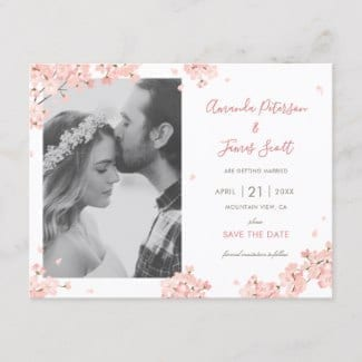save the date photo postcard with pink Japanese sakura cherry blossoms